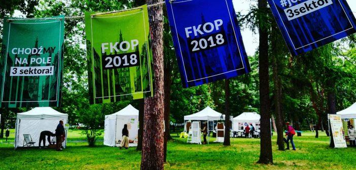 Dziś w Krakowie piknik NGO!