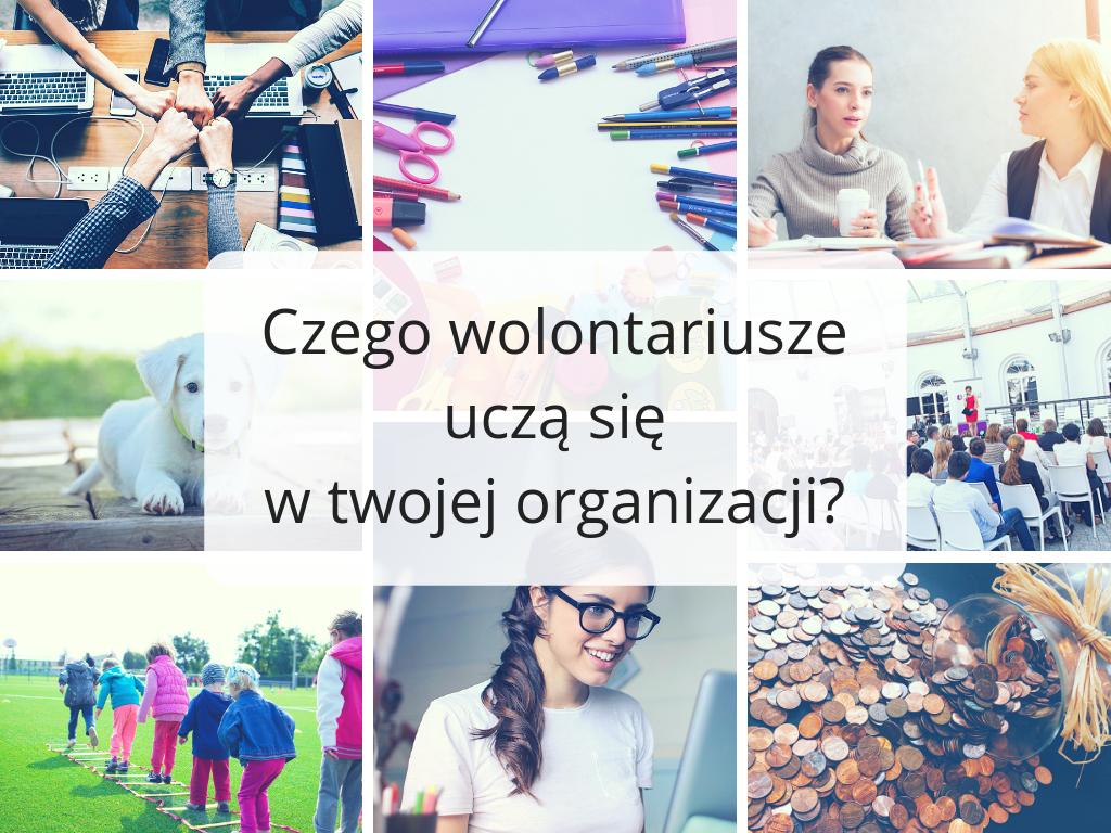 Sprawdź, czego wolontariusze uczą się w twojej organizacji!